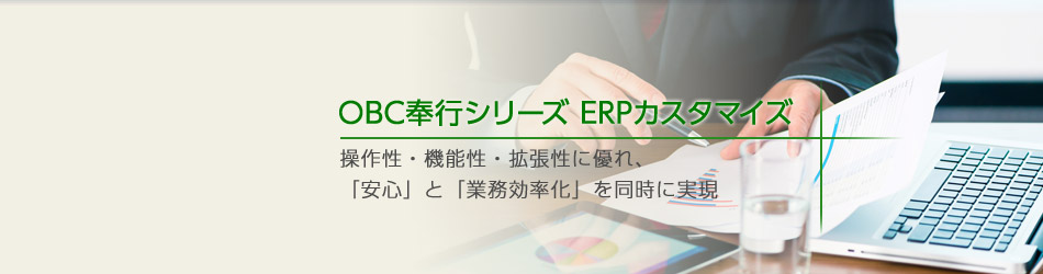 ERPカスタマイズソリューション