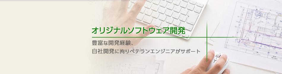 オリジナルソフトウェア開発ソリューション